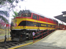 P1230729