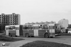 Historie - 1995 Brno Ikarusy
